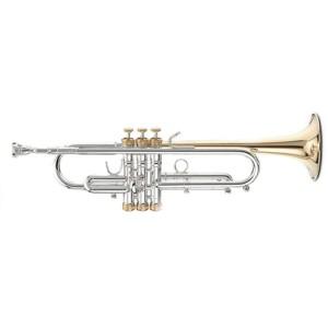 Trumpet / Cornet / Flugelhorn-小號/短號/富魯閣號